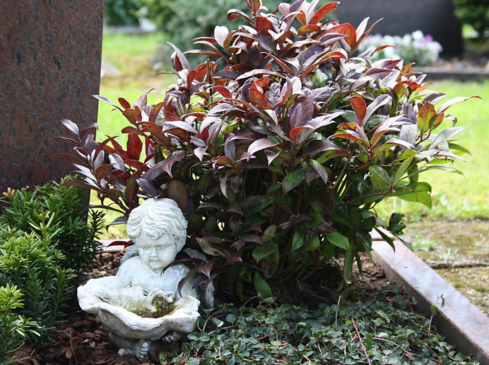 Garbgestaltung von blumen kaiser Foto Birgit Puck
