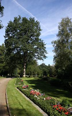 Friedhof in Neugraben Hamburg